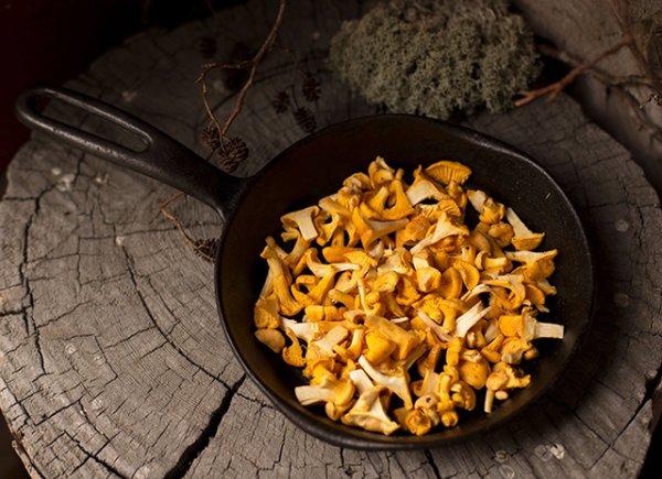 Какие интересные блюда можно приготовить с лисичками.(5 оригинальных рецептов)