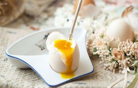 Рацион яичной диеты на 2 недели: как эффективно похудеть