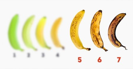 10 свойств банана, о которых вы скорее всего не знали
