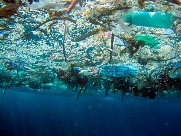 Одноразовые изделия из пластика: тарелки, столовые приборы, соломинки, Евросоюз запретит продажу к 2021 году
