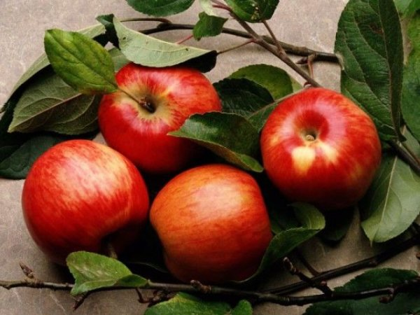 Какие  ягоды, фрукты и овощи, могут заменить дорогущие мультивитамины