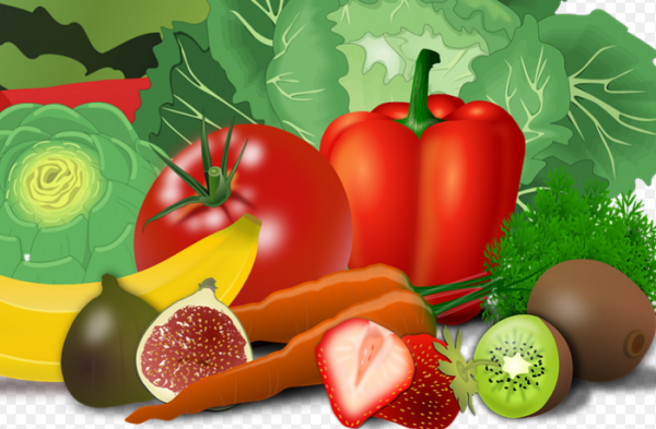 Система ежедневного правильного питания:  пять цветов здоровья каждый день