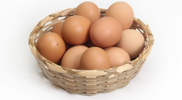 Как правильно заморозить куриные яйца, чтобы они дольше хранились