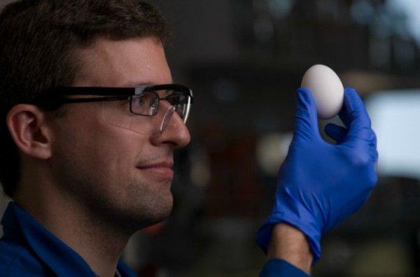 Специалисты заключили: воду после варки яиц выливать нельзя!