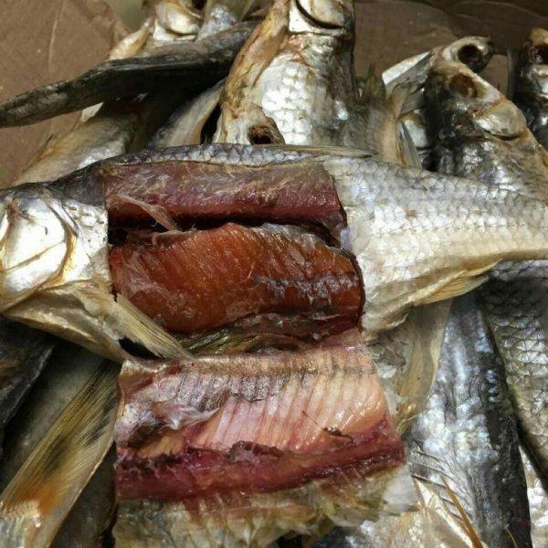 Почему в летнее время не желательно есть вяленую рыбу