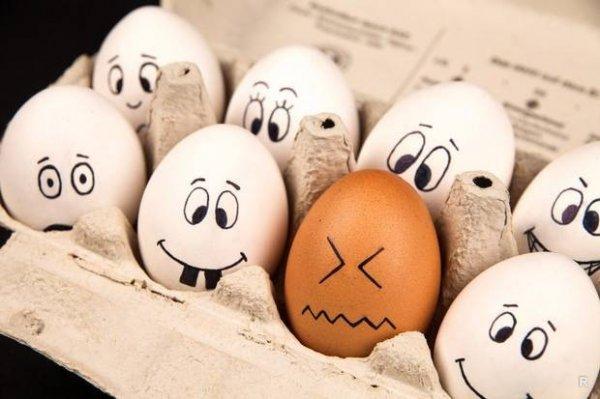 Почему нельзя мыть яйца и как правильно с ними обращаться