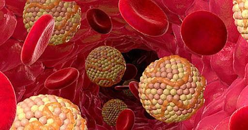 Любопытные факты о холестерине, о которых вы не подозреваете
