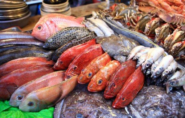 По каким основным признакам не станет приобретать рыбу в магазине настоящий повар