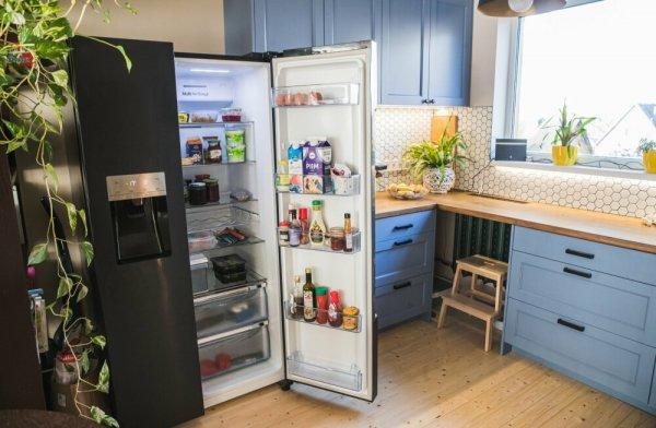 В домашних холодильниках коронавирус ожидают идеальные условия для существования