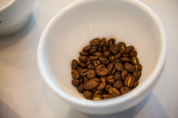 ТОП-5 популярных продуктов, которые скоро исчезнут из-за изменения климата