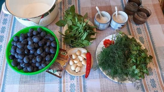 Как приготовить соус «Ткемали» из сливы на зиму