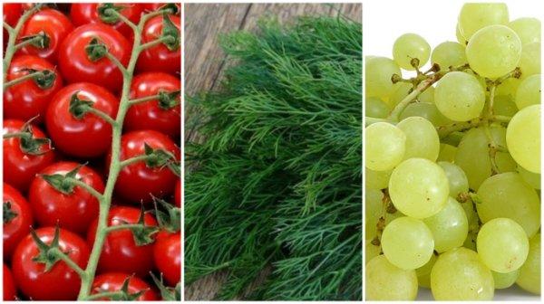 5 продуктов, которые полезнее употреблять не в свежем виде, а в переработанном